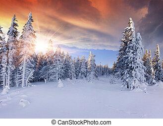 montagne., drammatico, bello, alba, cielo, rosso, inverno