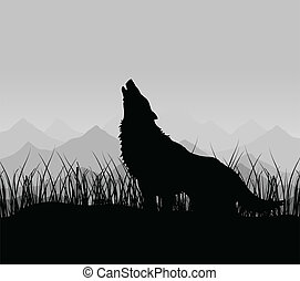 montagne, lupo