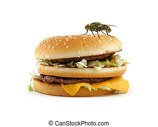 mosca, casa, appetitoso, hamburger, seduta