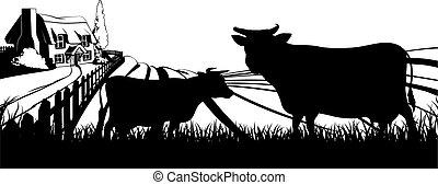 mucche, campo, concetto