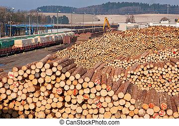 mucchio legno