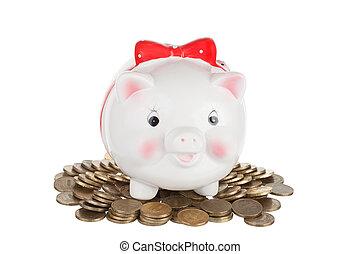 mucchio, stare in piedi, monete, bianco, scatola, pig-coin