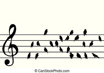 musica, astratto, doga, uccelli