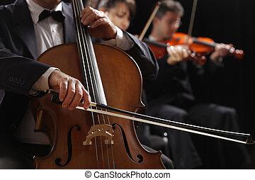 musica, violinisti, classico, violoncellista