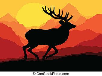 natura, cervo, vettore, foresta, fondo, selvatico, paesaggio