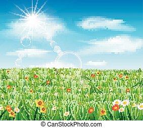 natura, fondo, erba, verde