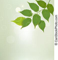 natura, leaves., vettore, sfondo verde, illustrtion.