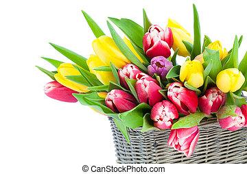 natura morta, romantico, madri, legno, tulips, cesto, giorno, fondo., primavera, fresco, fiori bianchi, felice