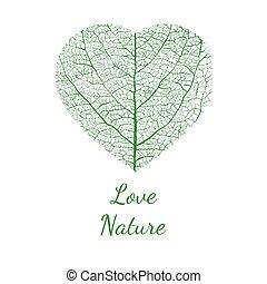 natura, vettore, amore