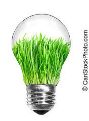 naturale, concept., luce, energia, isolato, verde, bulbo, bianco, erba, dentro