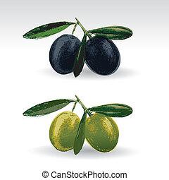 nero, olive verdi