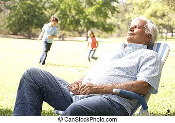 nipoti, rilassante, parco, fondo, uomo senior