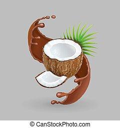 noce di cocco, schizzo, illustrazione, realistico, vettore, chokolate, 3d