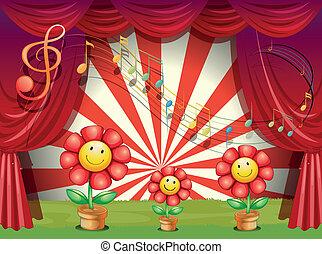 note, fiori, musicale, colorito, palcoscenico