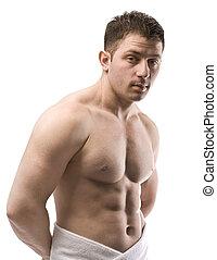 nudo, maschio, torso