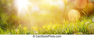 o, primavera, fresco, fondo, erba, estate, arte, astratto