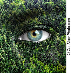 occhi, concetto, natura, -, foresta verde, umano, risparmiare