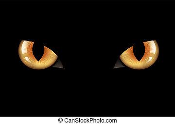 occhi, gatti