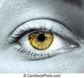 occhio, vettore, macro., giallo, femmina