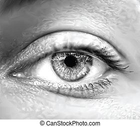 occhio, vettore, macro., grigio, femmina