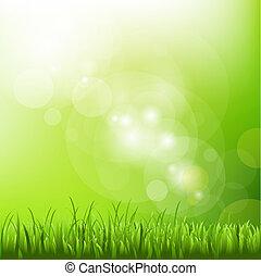 offuscamento, fondo, erba, verde