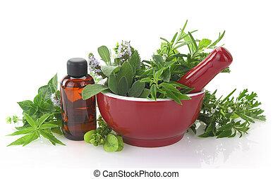 olio, mortaio, erbe, bottiglia, pestello, fresco, essenziale