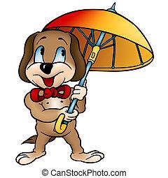 ombrello, cane