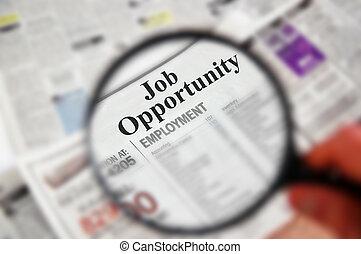 """opportunity"""", """"job, testo, sopra, classificato, lente ingrandimento, giornale, sezione"""