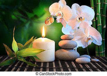 orchidea, bianco, terme, composition: