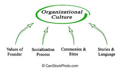organizzativo, cultura