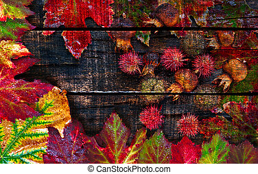 organizzato, colorito, legno, foglie, autunno, bagnato, vecchio, tavola