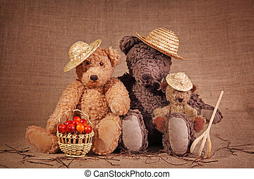 orsi, tre, teddy
