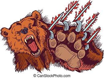orso marrone, o, vettore, ridurre, artigliare, cartone animato, mascotte