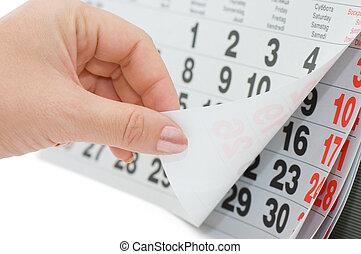 overturns, fondo, calendario, isolato, foglio, mano, bianco