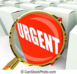 pacchetto, priorità, urgente, critico, refers, urgenza