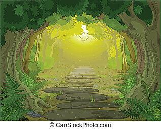 paesaggio, entrata, magia