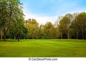 paesaggio., estate, albero, campo verde, bello