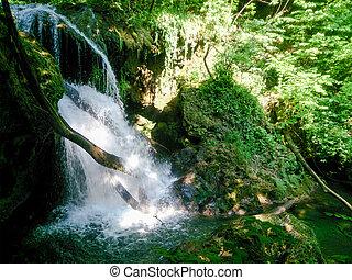 paesaggio natura, albero, river., foresta, fiume, montagne