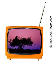 paesaggio, silhouette, tramonto, albero