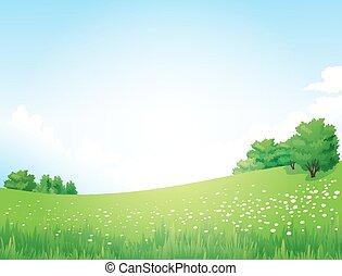 paesaggio, vettore, alberi verdi