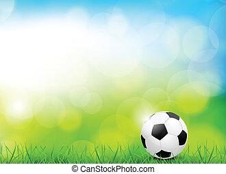 palla calcio, fondo