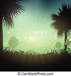 palma, paesaggio
