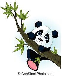 panda, albero rampicante, gigante