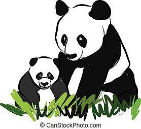 pandas, illustrazione