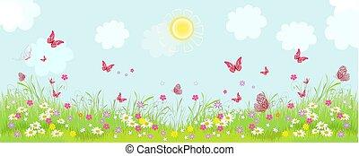 panorama, fioritura, fiori, soleggiato, prato