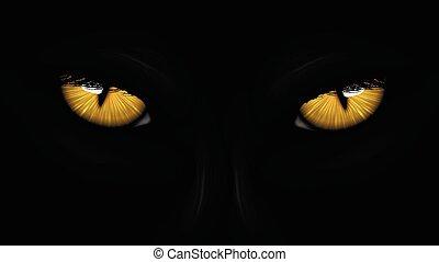 pantera, occhi, giallo, nero