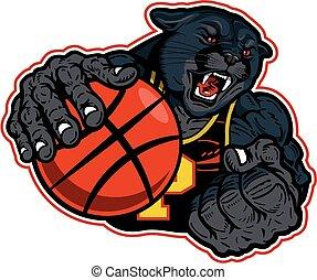pantera, pallacanestro