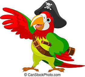 pappagallo, pirata