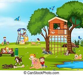 parco, gioco, animali domestici, bambini