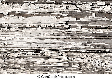 parete bianca, legno, vernice